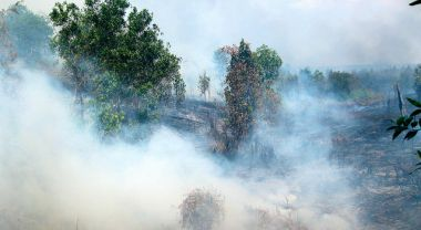 Fires in Indonesia are creating haze throughout Southeast Asia. Photo by Rini Sulaiman/ Norwegian Embassy for Center for International Forestry Research (CIFOR)
