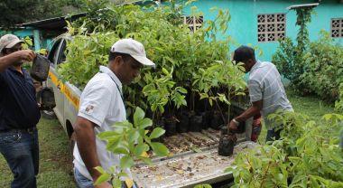 People working on land restoration.
