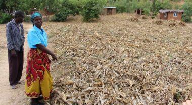 Woman in African field