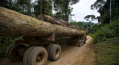 Timber truck in Cameroon. Photo by: Ollivier Girard/CIFOR/Flickr.