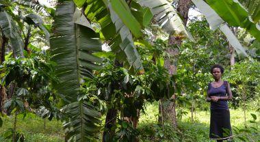Uganda coffee farmer
