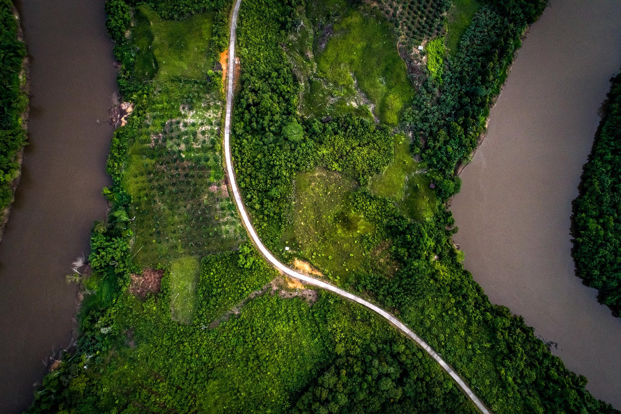 <p> Pengambilan gambar melalui udara di hutan Kalimantan Timur, yang menjadi lahan industri minyak kelapa sawit. Foto oleh Nanang Sujana/CIFOR.</p>