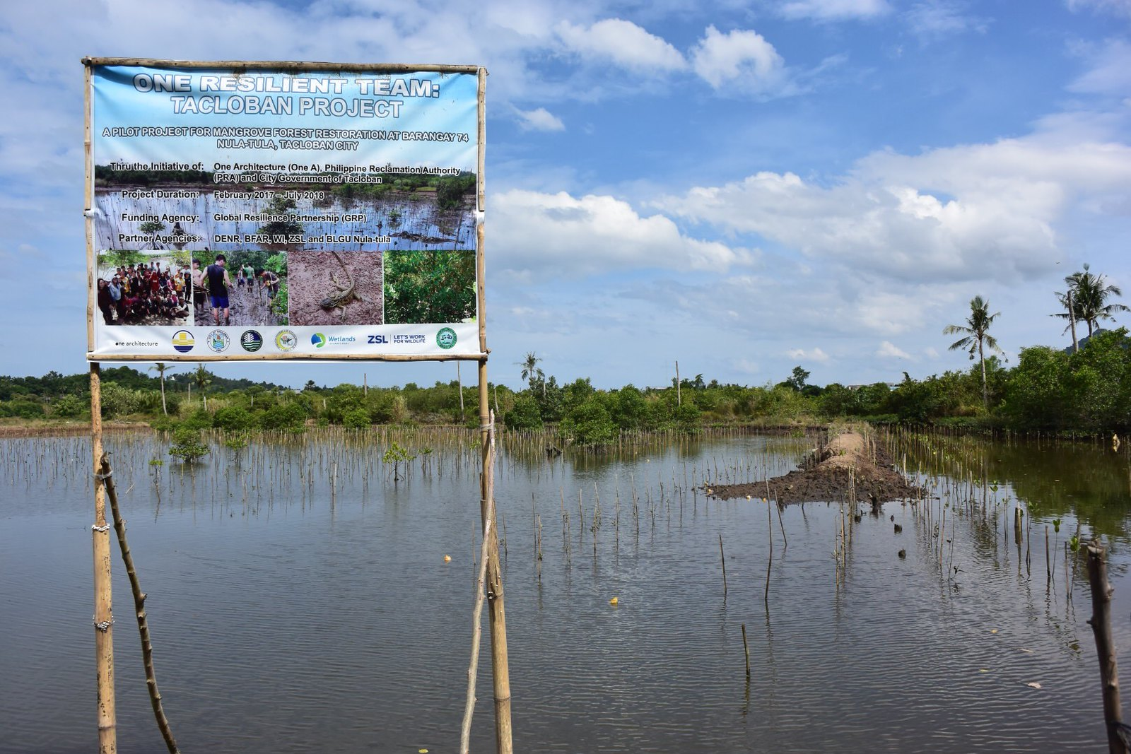 <p>Government officials and community members are working together in the Philippines to adapt to climate change, through projects like planting mangroves. Photo by Nicola Ward/Climate Centre.</p>
