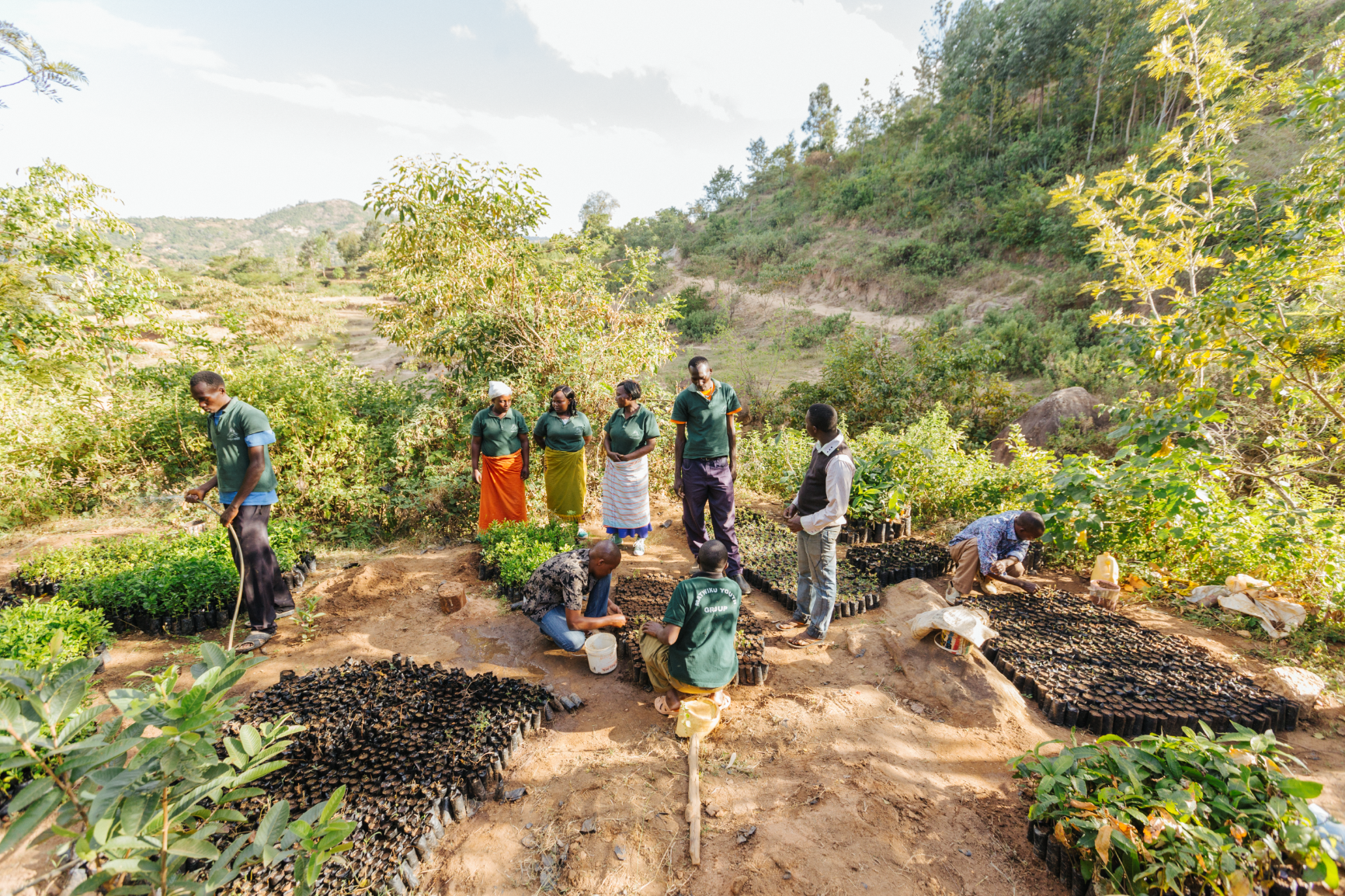 <p>Youth groups are growing trees in Kenya\'s Makueni County to protect and restore the landscape. Photo by Peter Irungu/WRI</p>