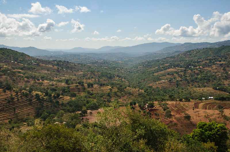 <p>In Makueni county, securing funds to prepare for dry periods is helping to improve agricultural production. Photo by Aaron&Lisa/Flickr</p>
