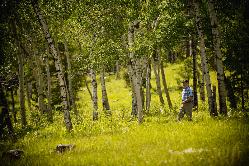 <p>Private landowners — such as this man near Clancy, Montana — can restore healthy forest ecosystems with additional support from the Environmental Quality Incentives Program (EQIP) and other federal conservation programs. Photo by USDA NRCS Montana/Unsplash</p>