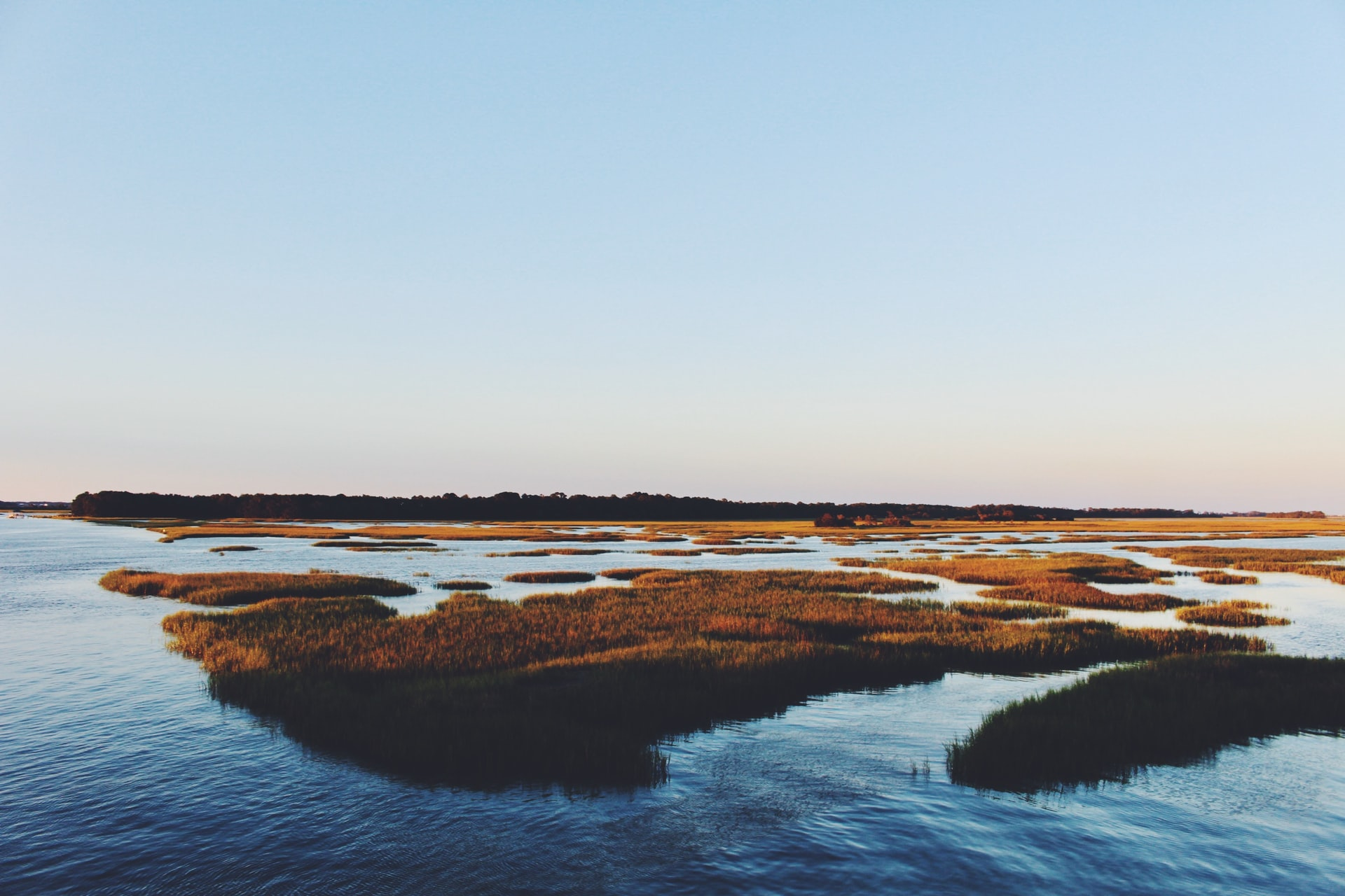 <p>Restoring coastal blue carbon ecosystems, including salt marshes such as this one, can help store carbon in addition to other restoration benefits. Photo by Bre Smith/Unsplash</p>
