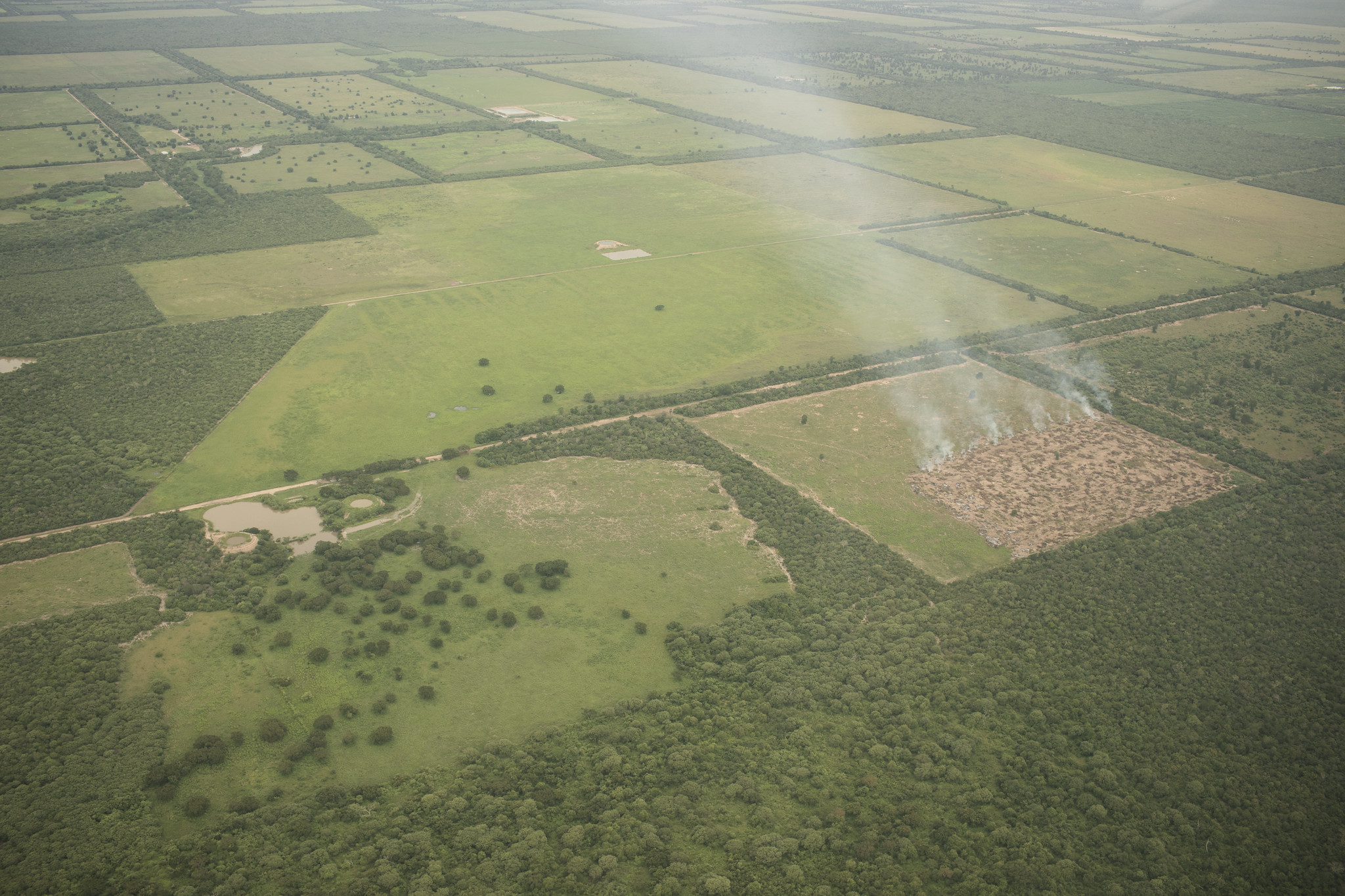 <p>Fires used to clear land for pasture in Paraguay's Gran Chaco region can be seen from an airplane. Photo by Jordi Ruiz Cirera/WRI.</p>